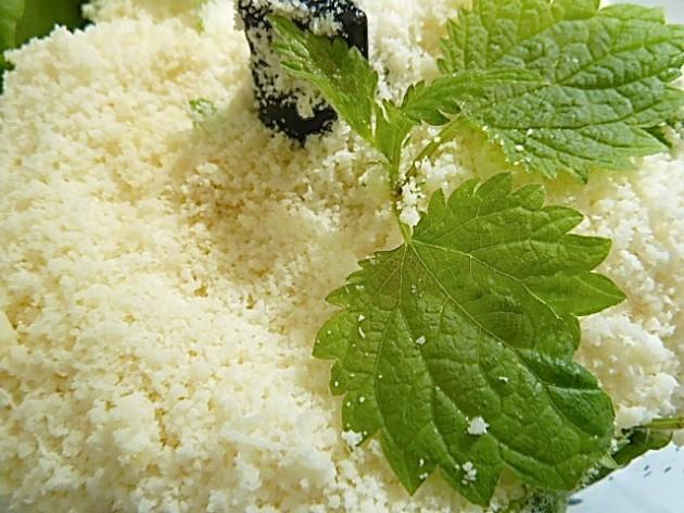 Brennessel-Basilikum-Pesto