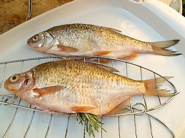 Weißfische vom Grill