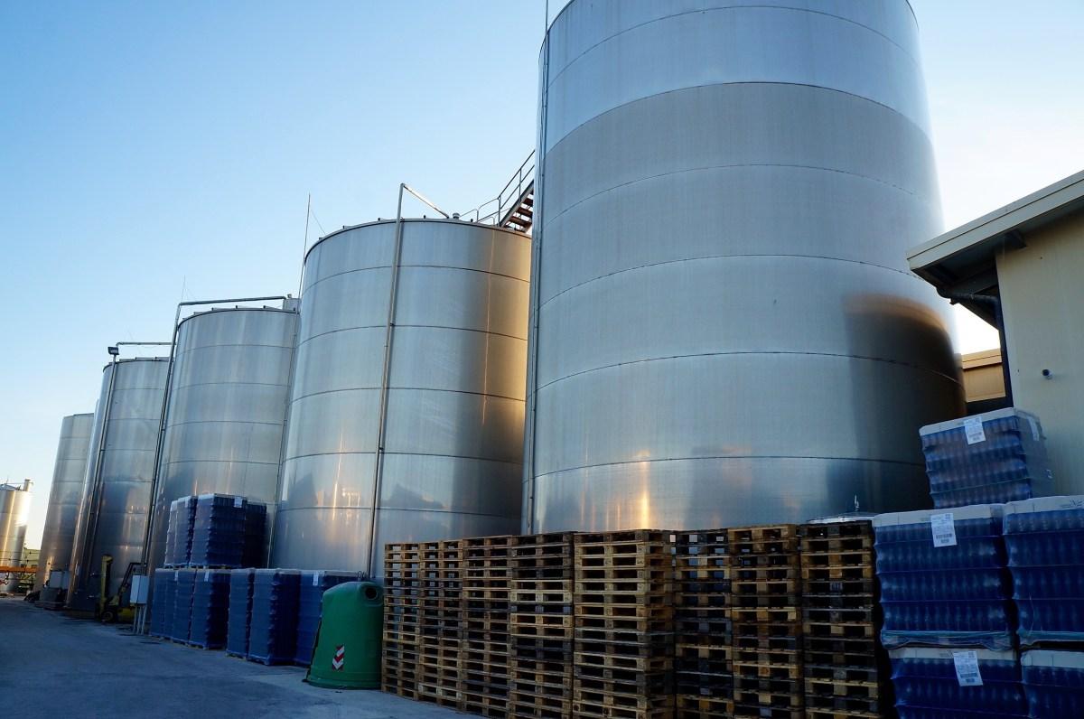 Fazio produziert große Mengen an Wein