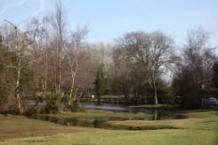 Flooded landscape 2