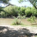Gila River - muddy