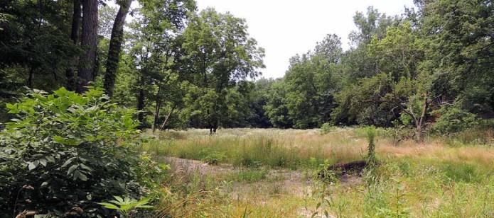 5 acres we sold just outside Danville