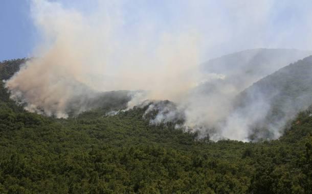 Terörle Mücadele Yöntemi: Dersim Orman Yangınları