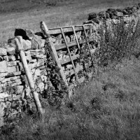 Dry stone wall,with useless gate.