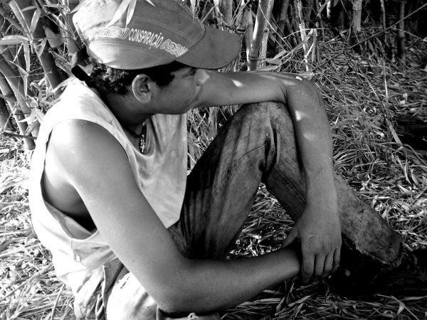 Trabalho infantil afeta 3 milhões de crianças no Brasil