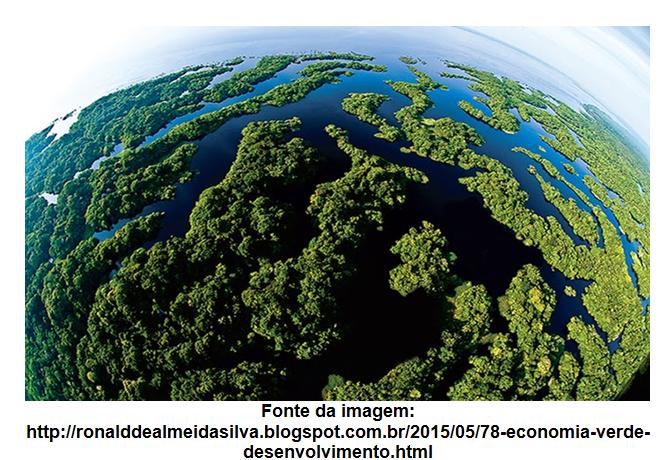 A necessidade de uma nova lógica ecológica planetária