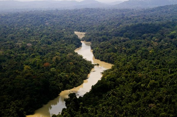 ista aérea do Parque Jamanxin, no Pará. Foto: Leonardo Milano/ICMBio