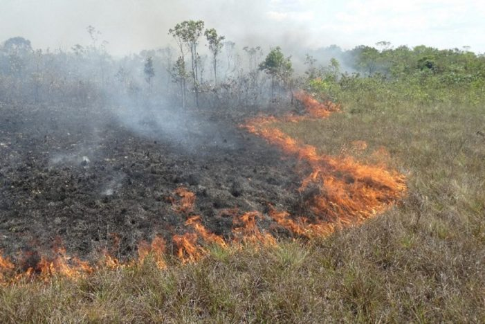 O Brasil está pegando fogo