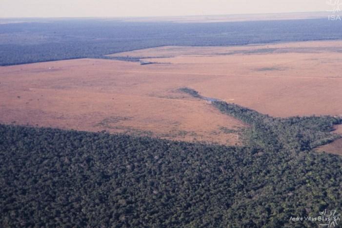 STF inicia próxima quarta (13/9) o mais importante julgamento sobre meio ambiente
