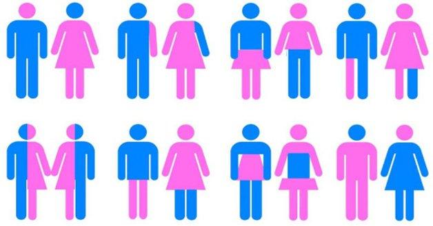 Transgênero, fluido, intersexual: as novas palavras do léxico de gênero