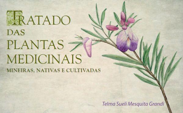 Livro gratuito reúne detalhes de quase 400 espécies de plantas medicinais