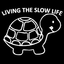 slow-life-1o-post-2017
