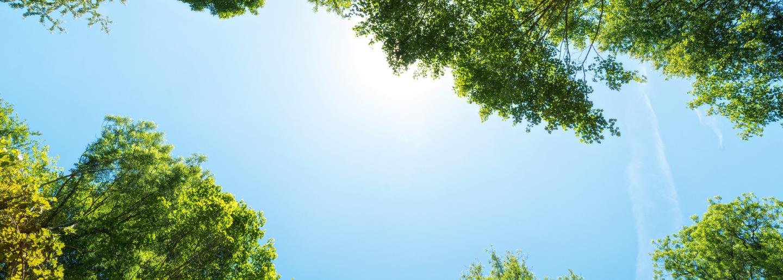 ¿Por qué últimamente se discuten muchos temas alrededor de la sostenibilidad?