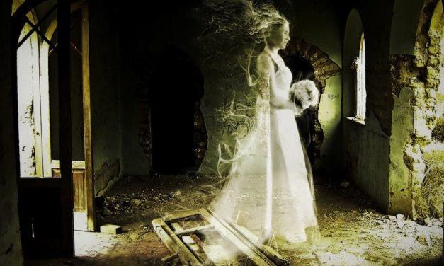 La damisela del castillo Ronfot