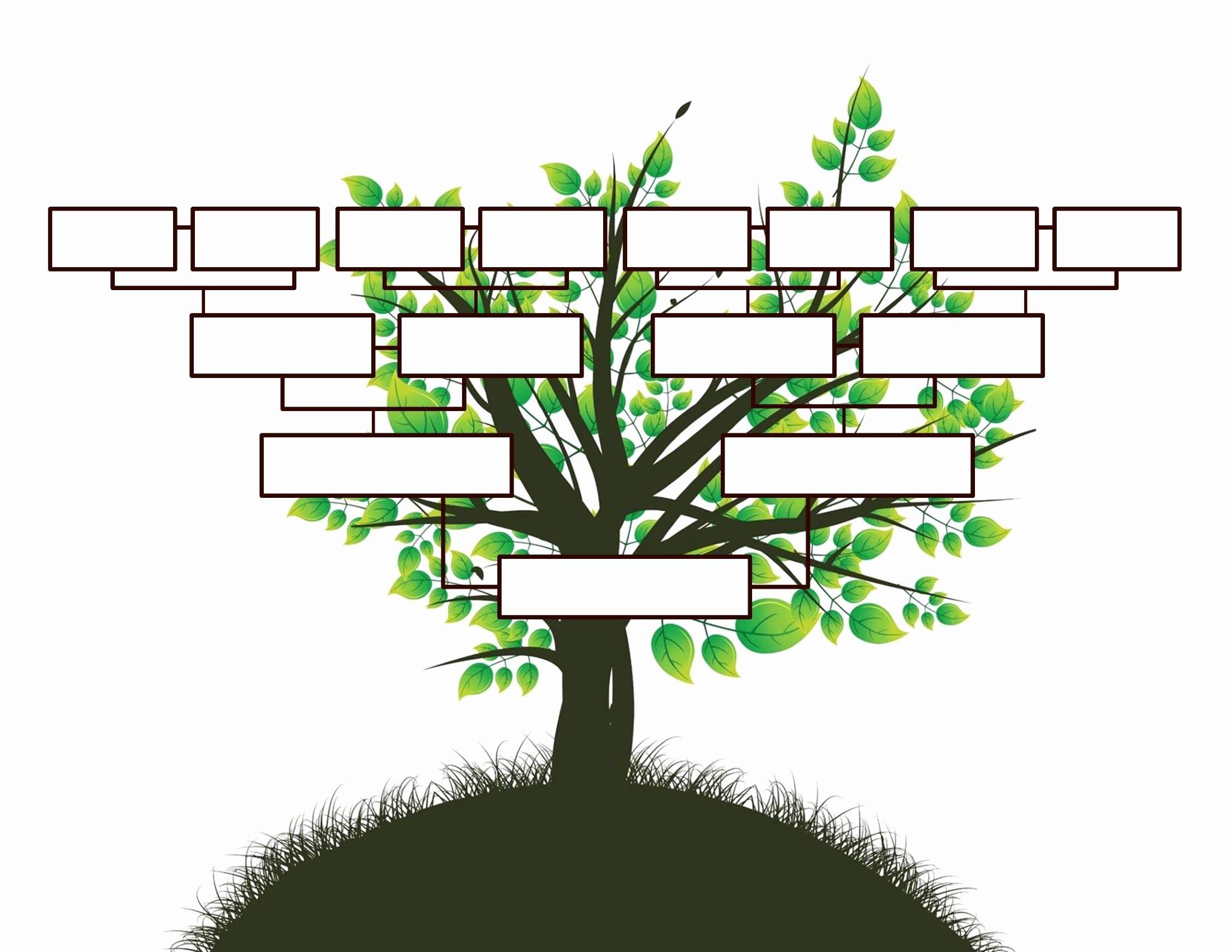 40 Free Printable Family Tree