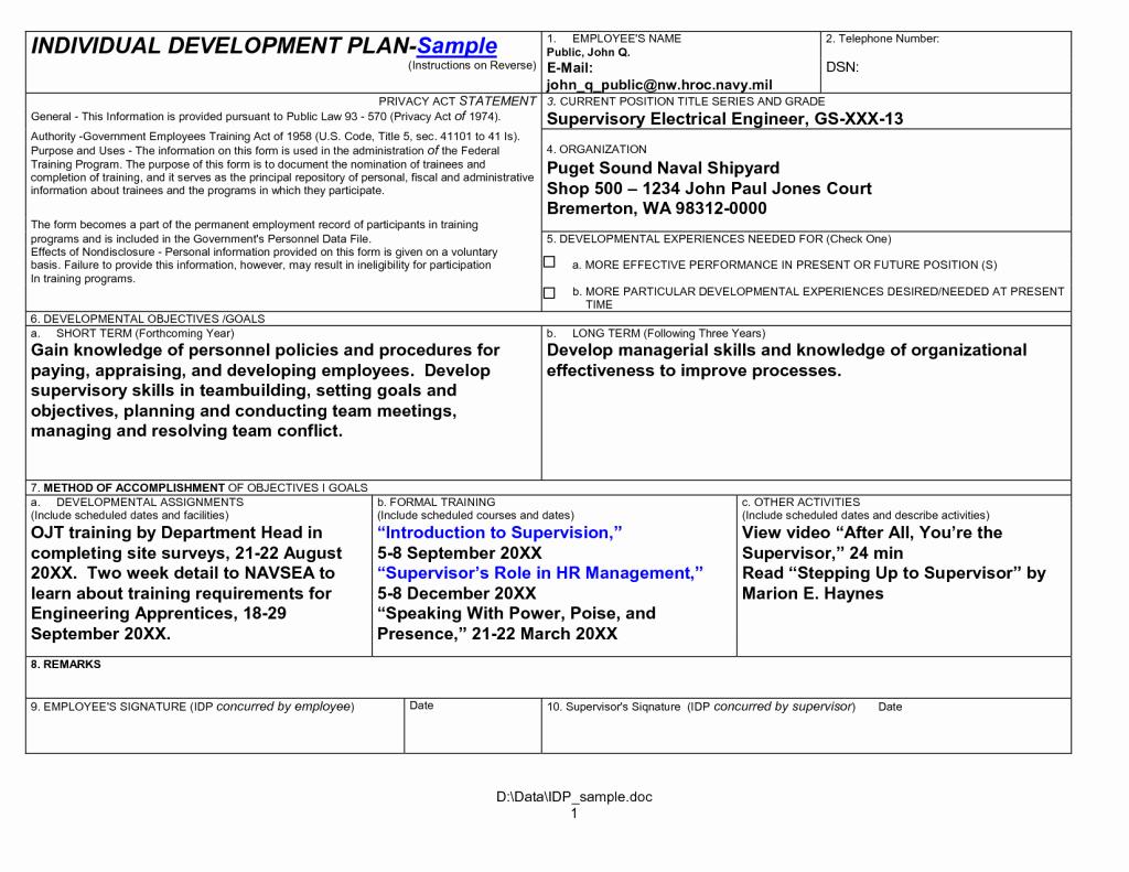 40 Individual Development Plan Template