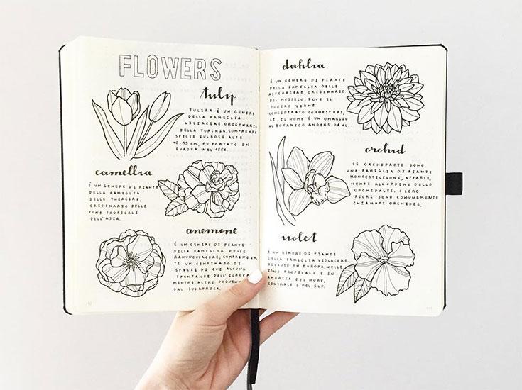 5 Instagrams para quem ama bullet journal
