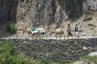 Chemin muletier cote afghan