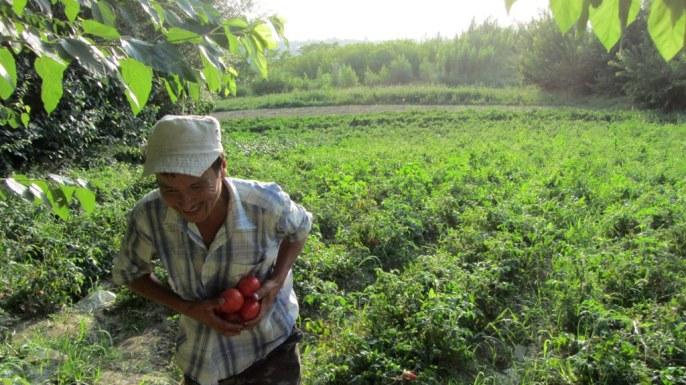 Aïtkul, un paysan bienveillant, nous offre tomates, poivrons et oignons et même un coin de son champ pour le bivouac.