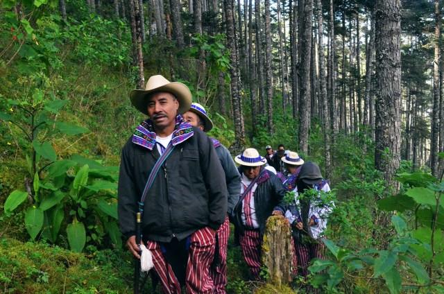 Consolidación del Sistema Guatemalteco de  Áreas Protegidas -LIFE WEB-