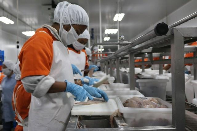 Sector de Acuicultura y Pesca para generar más empleos formales necesita incrementar sus exportaciones