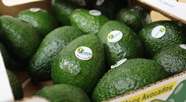 BREXIT: Sube la tensión a productores de arveja china, ejote, moras, limón y otros del altiplano