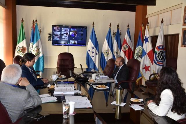 Ministro de Agricultura participa en reunión regional virtual de sanidad agropecuaria