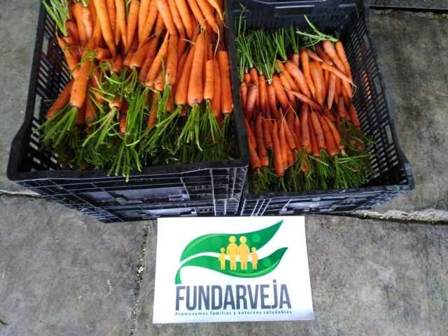Comité de Arveja y Vegetales de Agexport dona a servidores públicos y a población vulnerable, vegetales de exportación