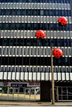 McDill Design - Milwaukee Building 622