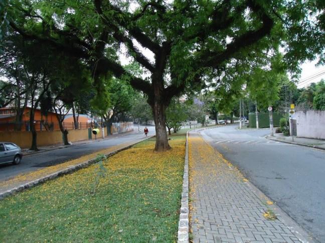 Praça Osvaldo Aranha. Foto Jackson Fu, Panoramio
