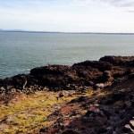 Punta del Este - Uruguai - 06