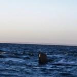 Puerto Madryn - 93