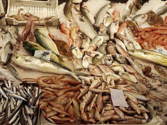 mercado do peixe de catania