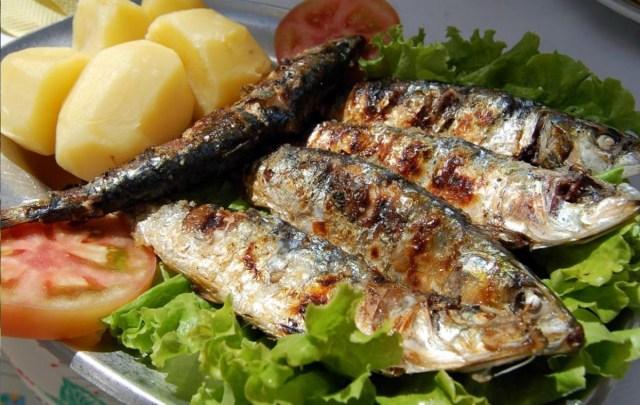 O melhor peixe do mundo