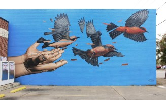 Pajaros de james bullough