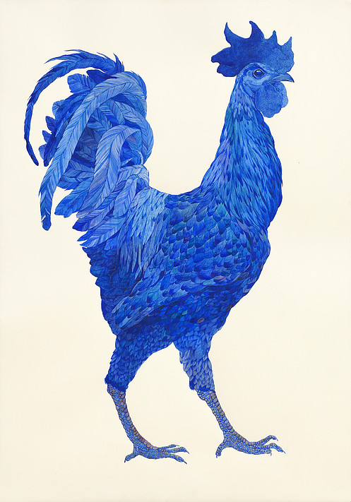 asya-lisina-the-blue-rooster