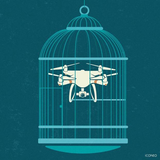 Iconeo - Free a bird, catch a drone.