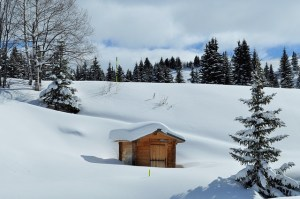 snow 1178270 640 - snow-1178270_640