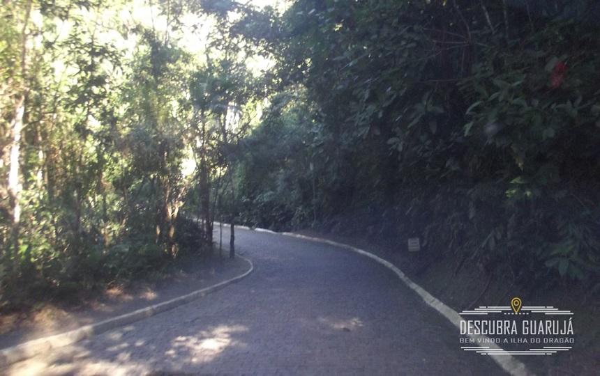 Estrada no condominio acesso Praia do Tijucupava