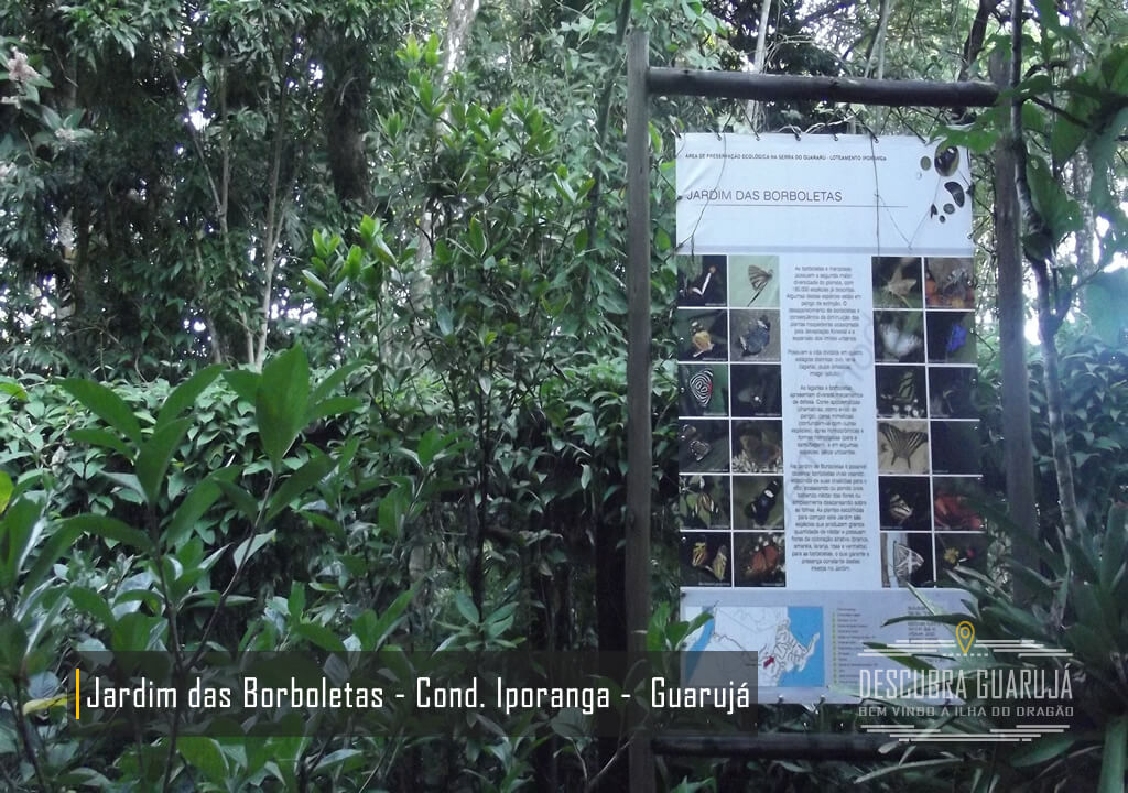 Jardim das Borboletas - Cond Praia do Iporanga Guarujá