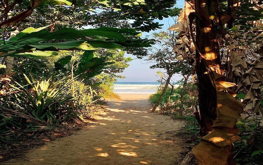 Chegando na Praia de Itamambuca em Ubatuba
