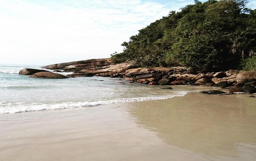 Praia do Tenório Ubatuba Litoral Norte