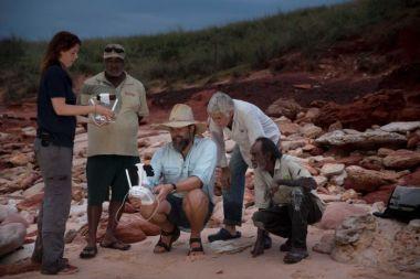 paleonto 300x200 - Drones que ayudan a buscar fósiles de dinosaurios