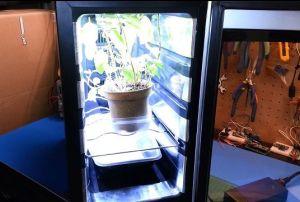 invernadero-arduino2-300x202 Arduino te ayuda a crear un invernadero para tu cocina
