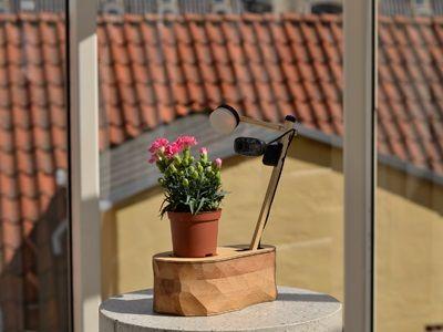 planta selfie arduino - Hazte un selfie con esta planta controlada con Arduino