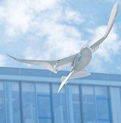smartbird - El pájaro inteligente de Festo