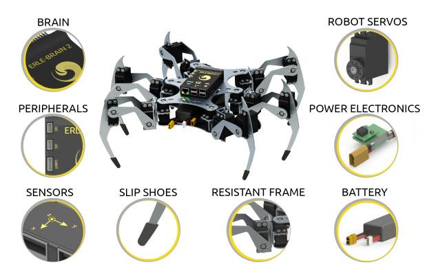 spider-erle2 Erle Robotics entre las 15 start-ups finalistas del mundo por Robohub 2015