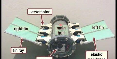 robot submarino - Robot submarino impulsado por Arduino