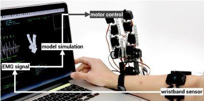 roboticamano4 - ¿Te gustaría tener una mano extra robótica? El MIT ya la ha diseñado