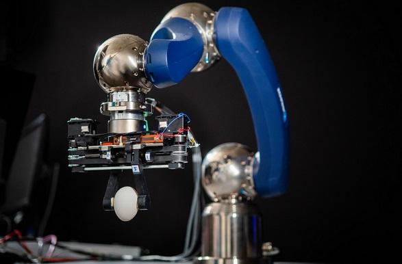 pinza robotica cogiendo huevo